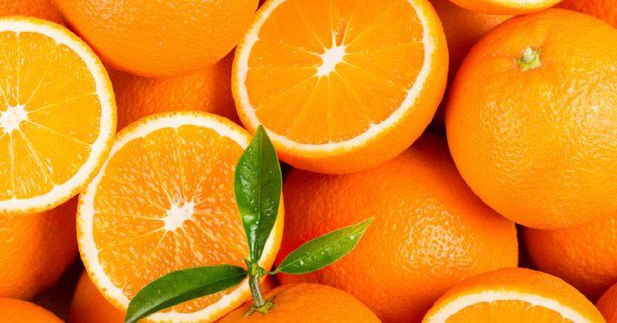 México es el mayor exportador de naranjas a Estados Unidos