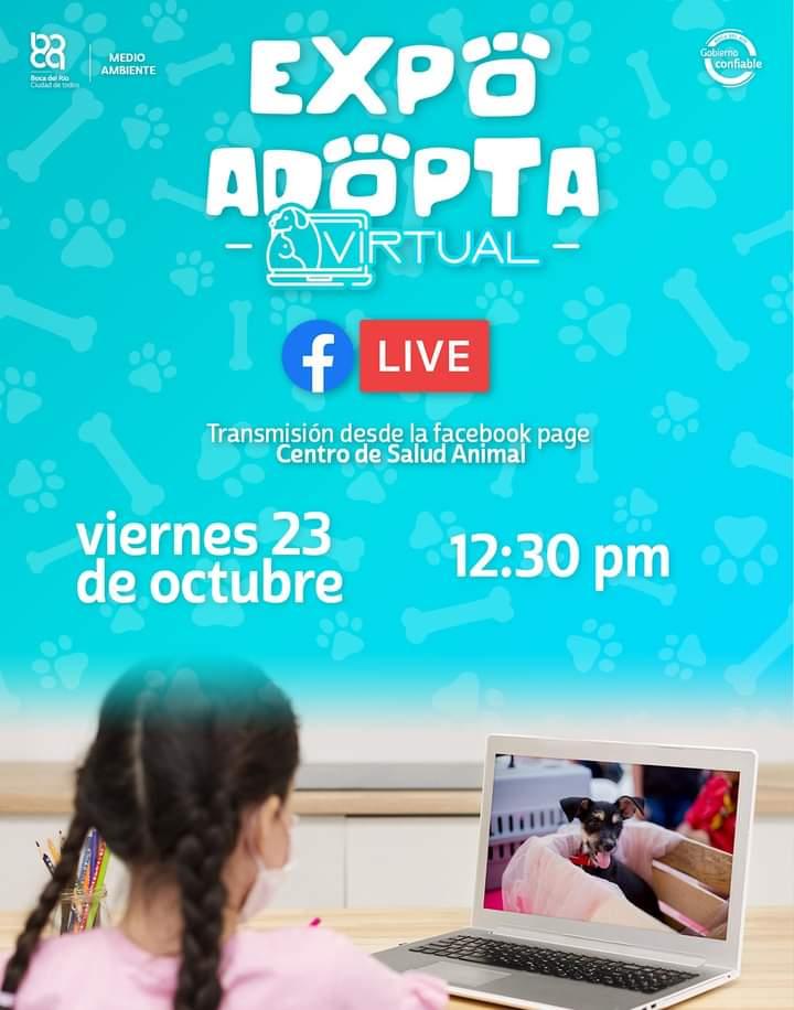 """Realizarán """"Expo Adopta Virtual"""" de perros y gatos"""