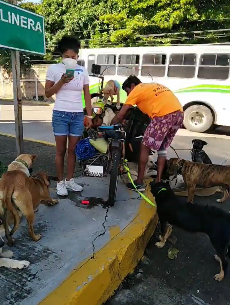 Gobierno de Boca del Río persigue a rescatista canino.