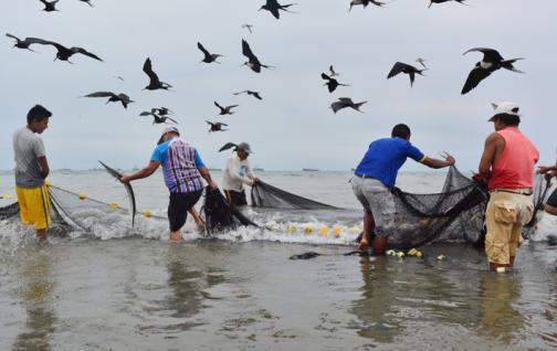 Pesca veracruzana cae al octavo lugar de producción