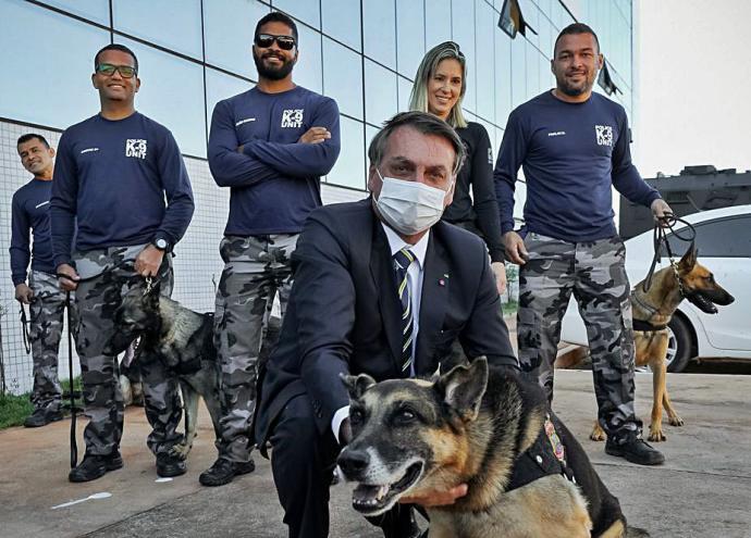 Bolsonaro hace que perro firme una ley para castigar maltrato animal.