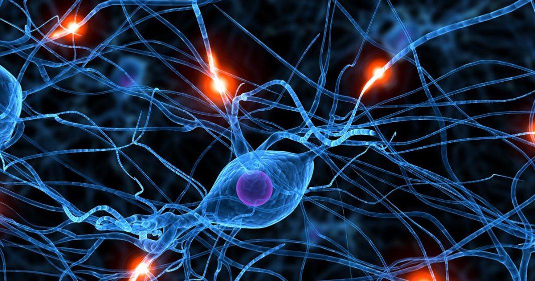 Descubren una reacción extraña de la cocaína en el cerebro.