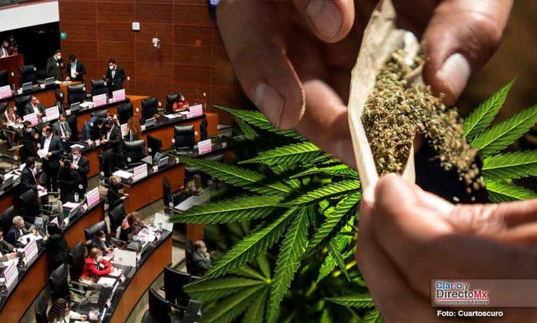 El senado aprueba la legalización de marihuana para uso recreativo.