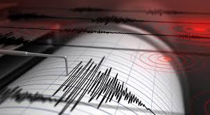 Seis sismos sacuden territorio mexicano