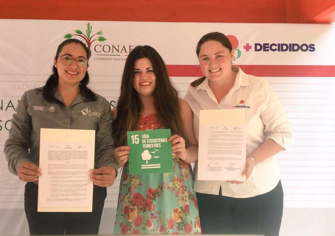 Los retos de la educación ambiental: interés y sensibilidad ante el cambio climático