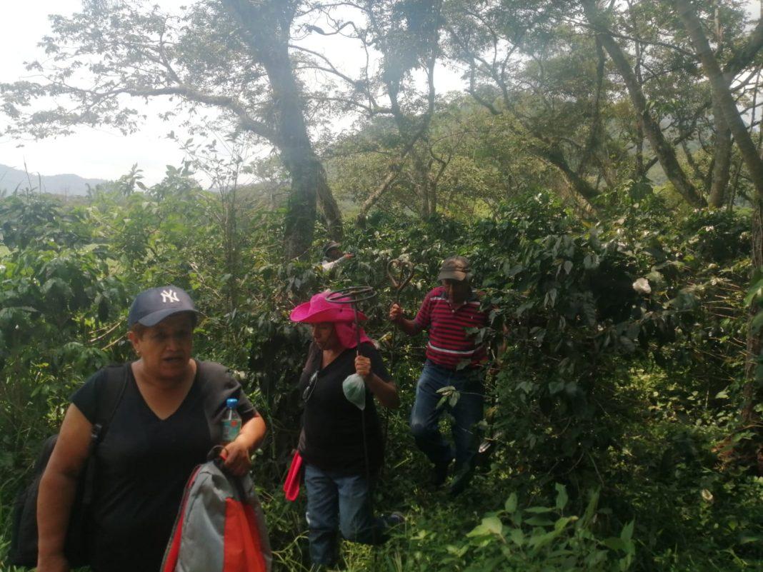 Recuperan más de 16 cuerpos en fosas de Campo Grande