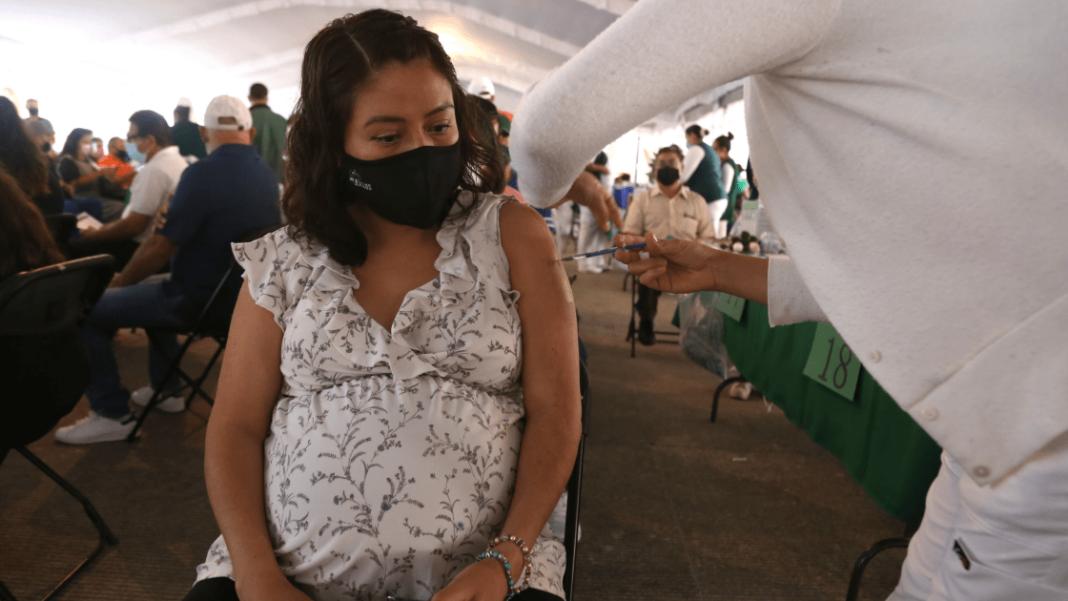 Veracruz es segundo lugar nacional en defunciones maternas por Covid-19